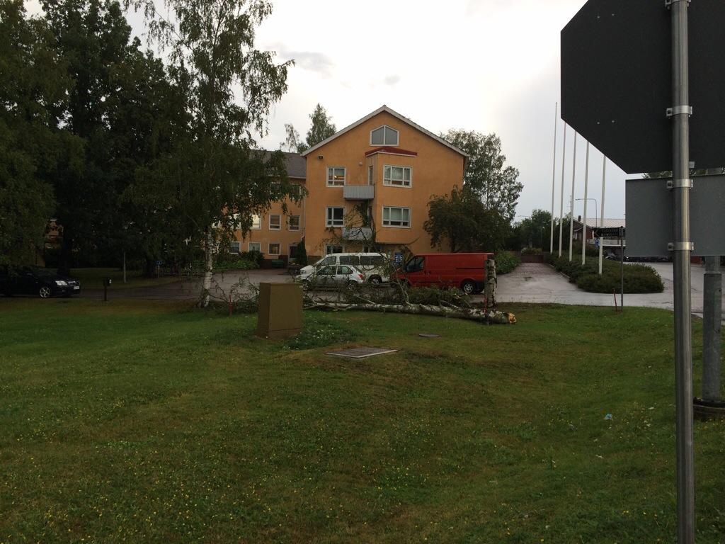 Puu kaatui Kokemäen kaupungintalon pihassa auton päälle. Kuva: Tuomas Kuhalainen